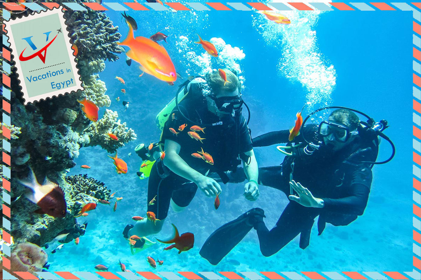sharm el sheikh diving holidays