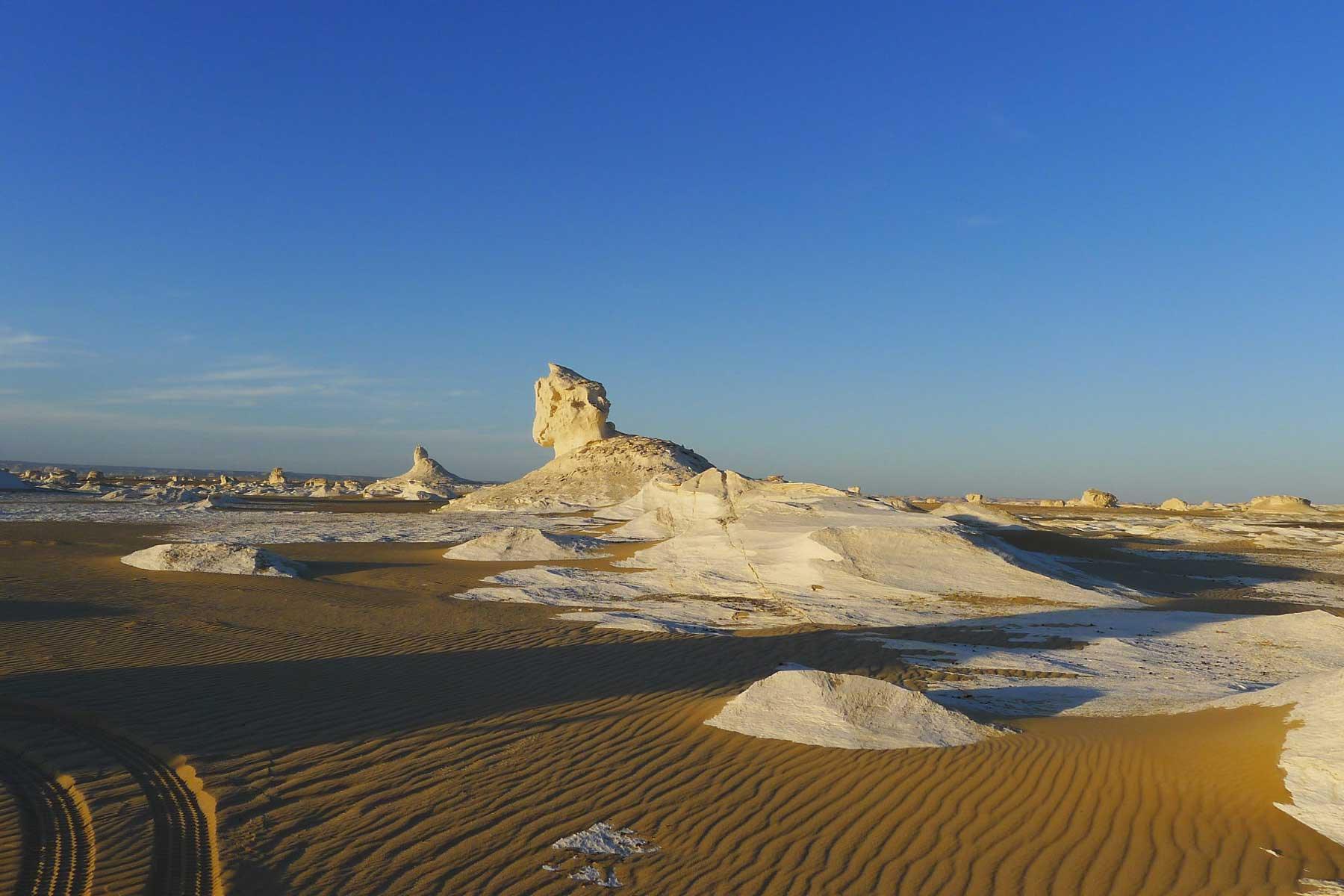 Bahariya oasis in Egypt