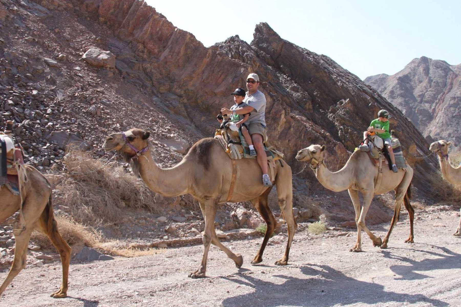 Desert safari Sharm el sheikh